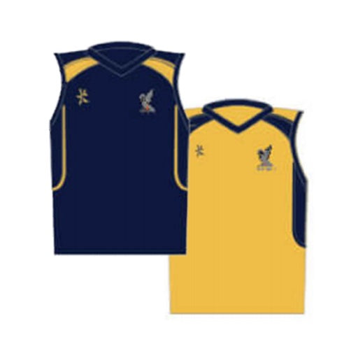 Ardingly College Senior Basket Ball Top