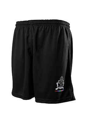 St. Wilfrids Crawley PE Shorts