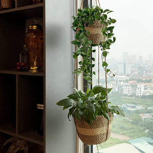 2 Tier Woven Hanging Plant Pot