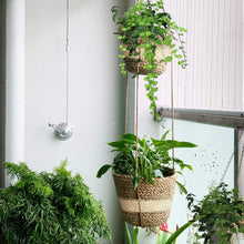 Load image into Gallery viewer, 2 Tier Woven Hanging Plant Pot