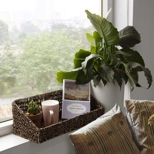 Wall-Mount Woven Seagrass Shelf w Storage Baskets