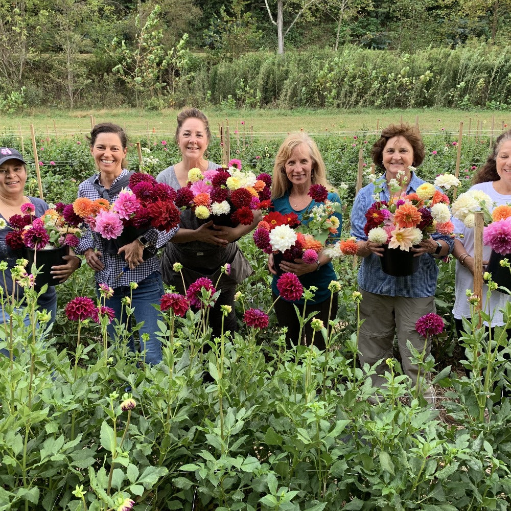 Asheville, NC, Flower Arranging Workshop