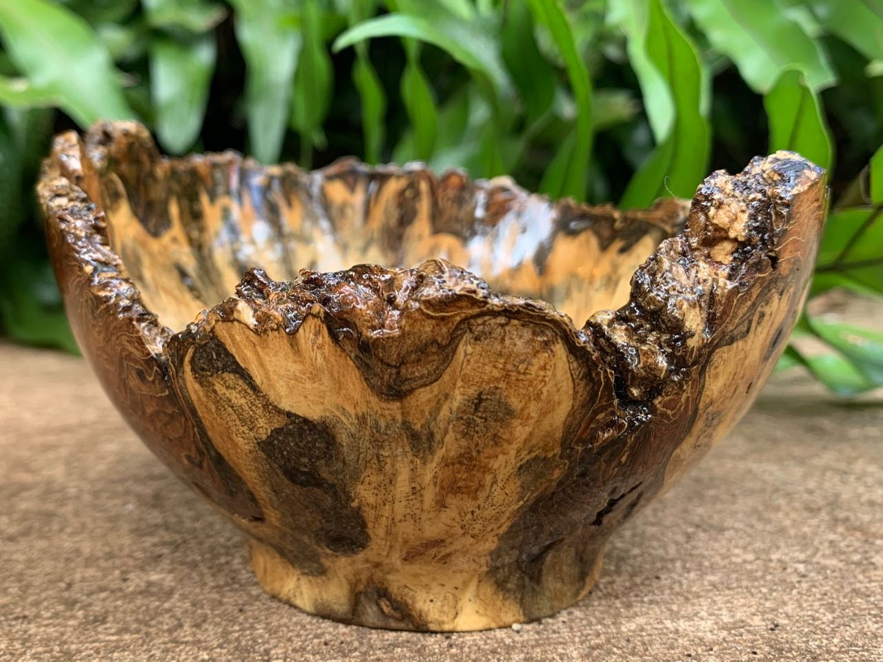 Craig Mason: Hau Burl Natural Edge Bowl