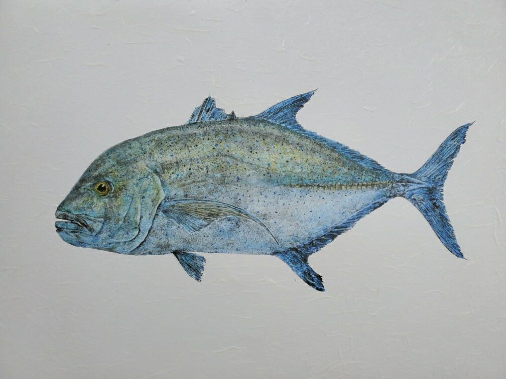 "Deep Hawaii Art: ""Ru Paul"" The Omilu (BlueFin Trevally) Gyotaku"