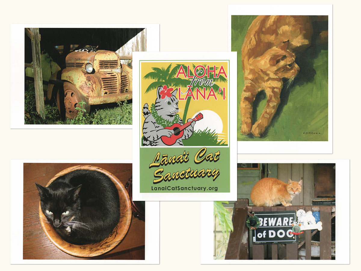 Note Cards: Cats in Paradise