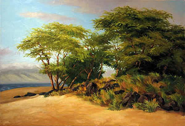 Polihua Afternoon, Lana'i