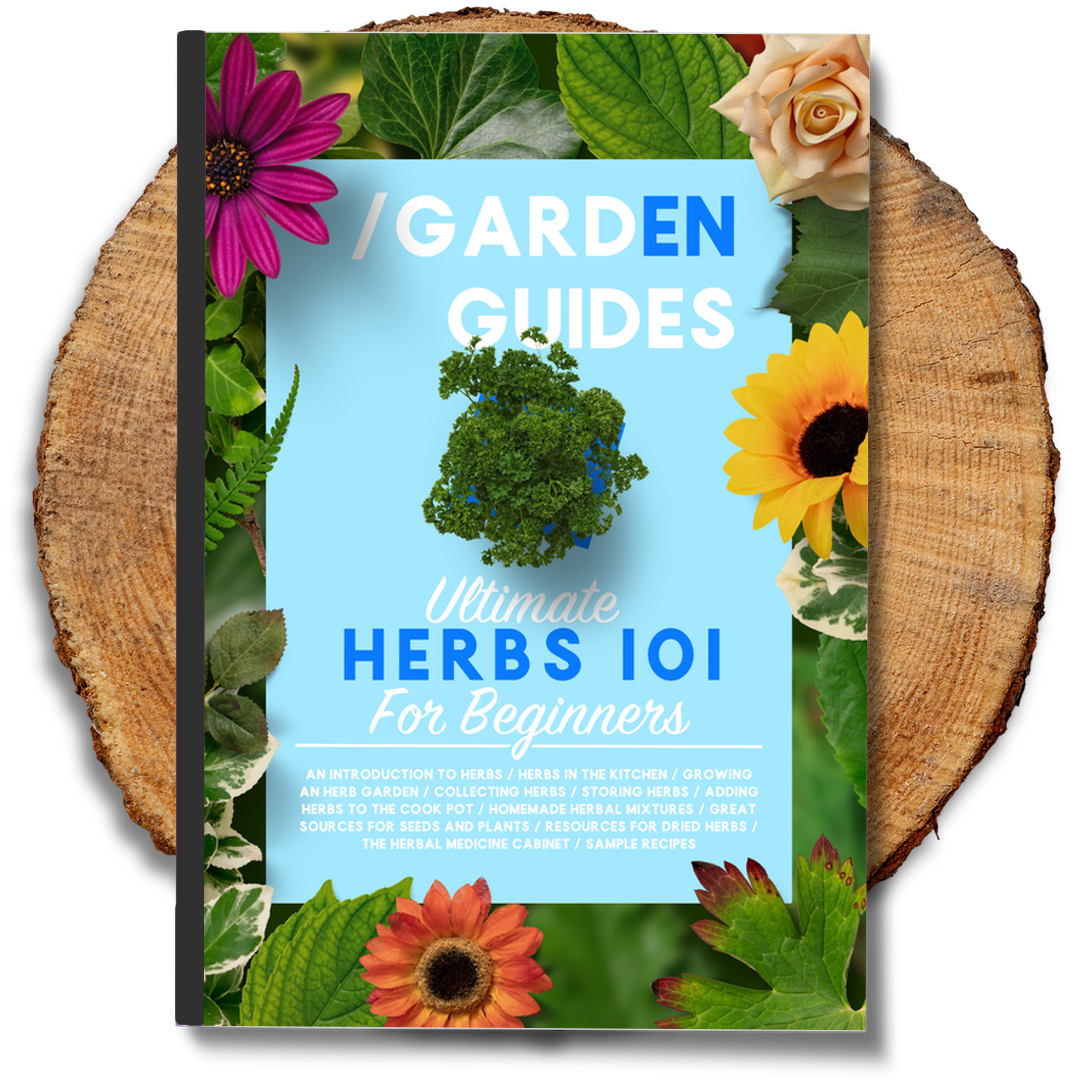 Ultimate Herbs 101 For Beginners Gardening Guide Store