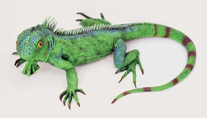 Rubber Lizard