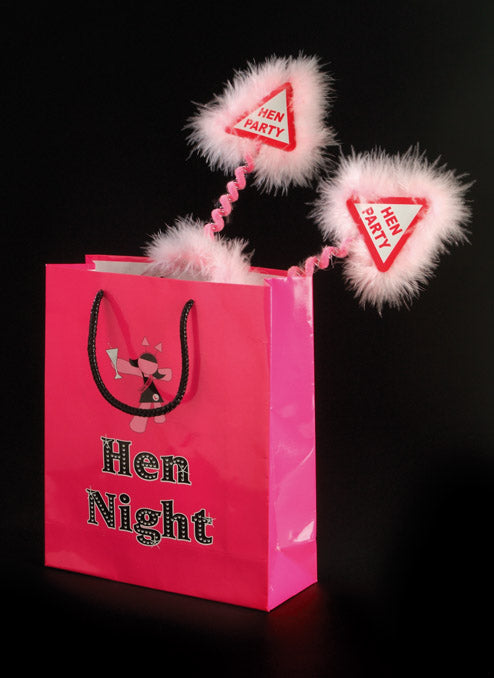 Set of 3 Hen Night Gift Bags