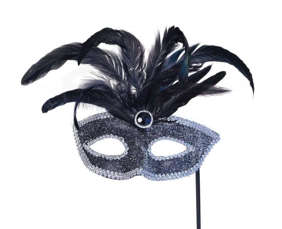 Black Eye Mask with Silver Trim on Stick