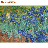 Iris Garden Paint by Number