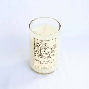 Potter's Craft Cidery Grapefruit Hibiscus Candle