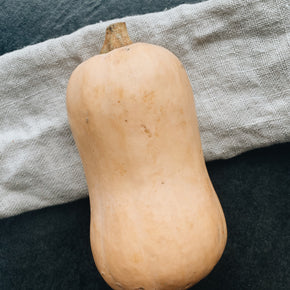 BC Grown Butternut Squash (1)