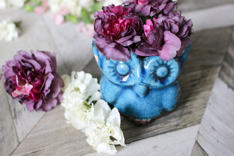 Create beautiful dried flower arrangements with Flower Drying Art from <em>ACTÍVA</em> Products.