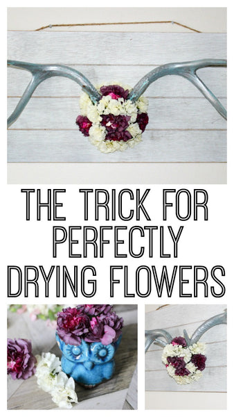 Learn how to get beautiful and vibrant dried flowers in this post!  The trick to drying flowers is easy, and you can create beautiful dried flower art!