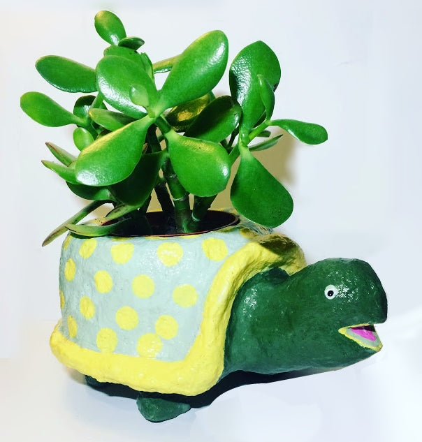 Sculpt an adorable paper mache turtle planter with instant paper mache from <em>ACTÍVA</em> Products!