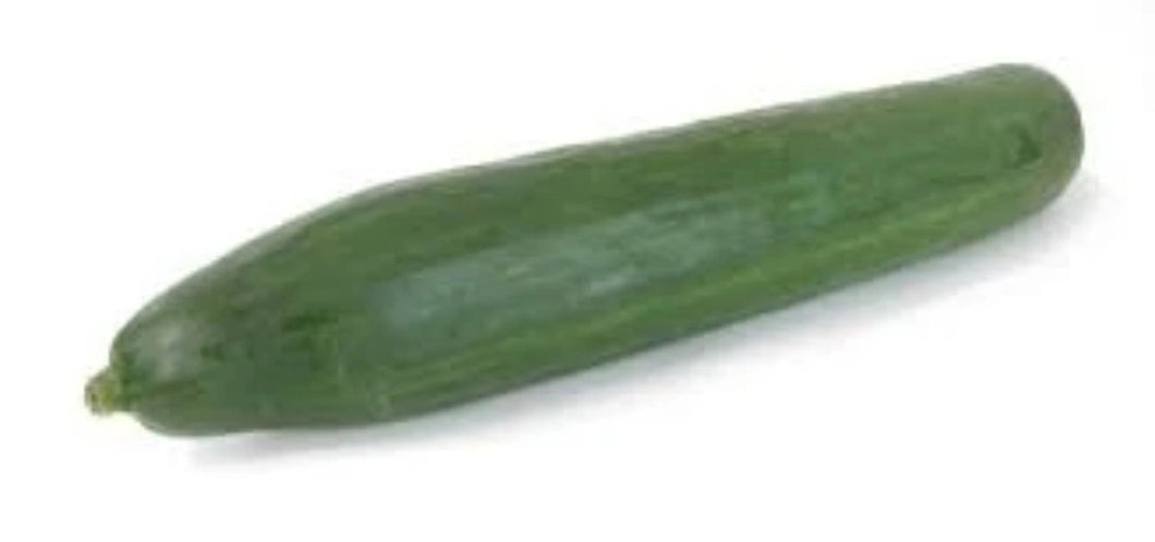 Long European Cucumber Long English Cucumber Organic Vegetables Thailand