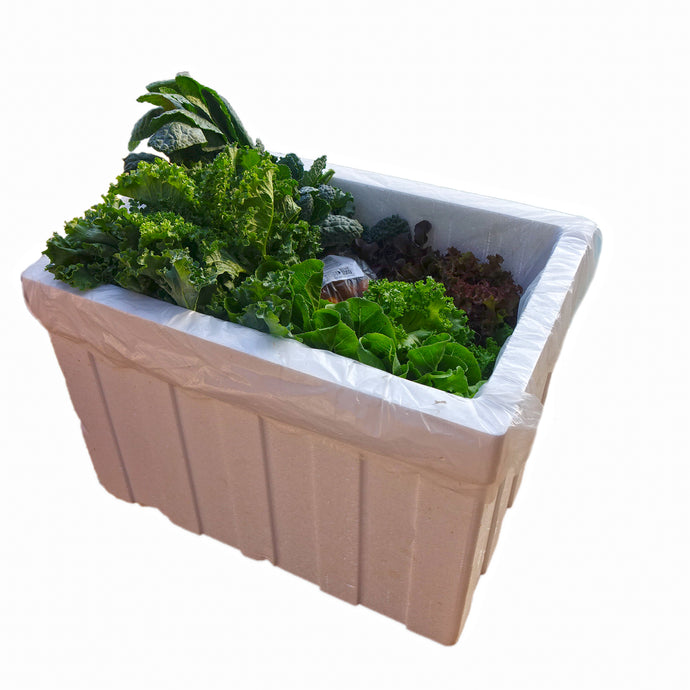 Organic Salad Box with Kale (Medium Size)