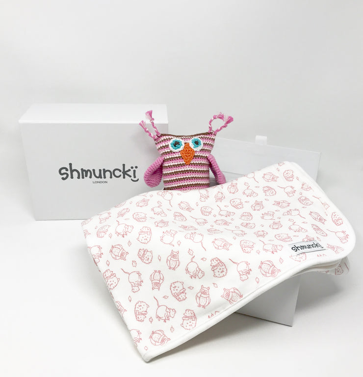 Baby Blanket and Owl Rattle Gift