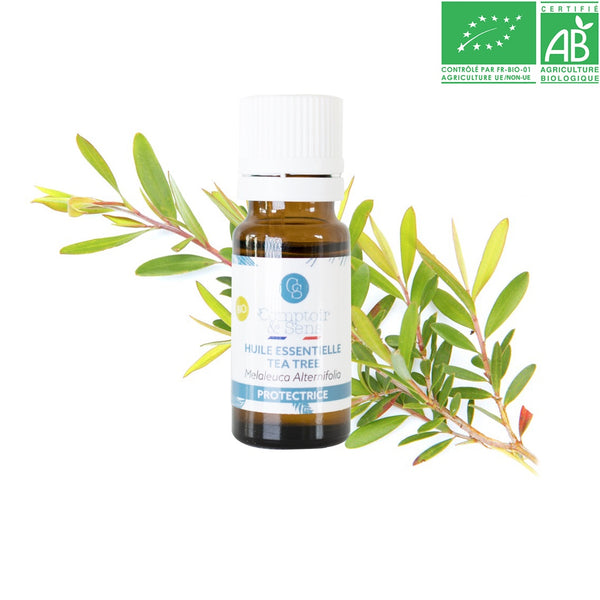 TEA TREE ( ARBRE A THÉ ) BIO