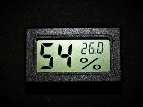 queen of ants ant keeping equipment thermometer hygrometer