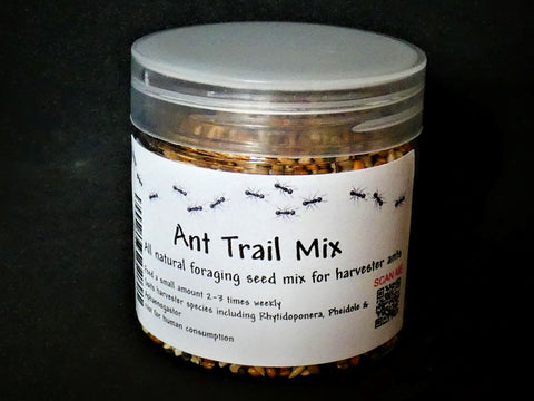 ant food seed mix foraging harvester ants