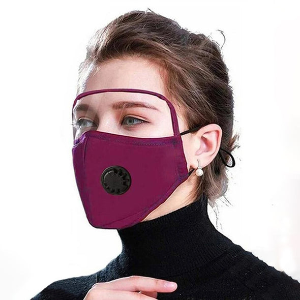 Outdoor Face Protective Earloop Valve Face Mask with Eye Shield