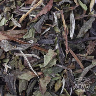 TWG Tea Loose Leaf 1837 White Tea