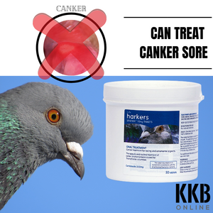 Harkers Spatrix - Canker Sore Treatment - KKBOnline