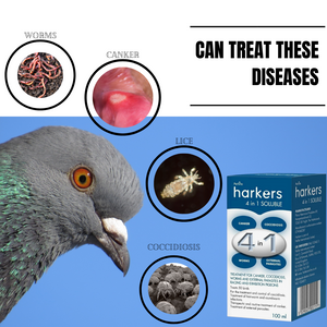 Harkers 4 in 1 Soluble - Pigeon Treatment - KKBOnline
