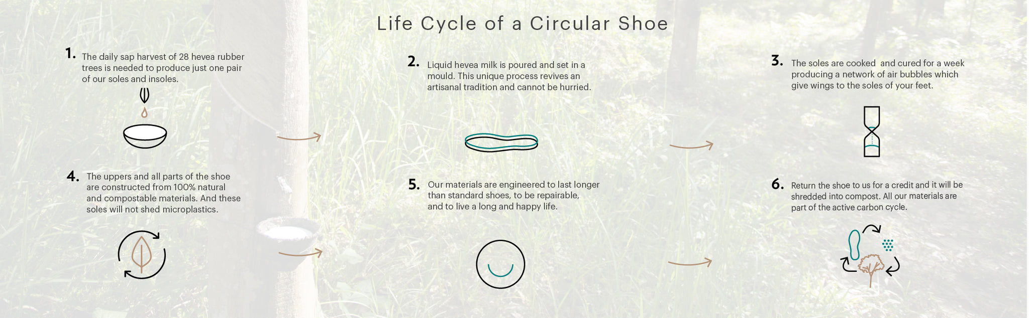 Life cycle of a circular plastic free trainer shoe