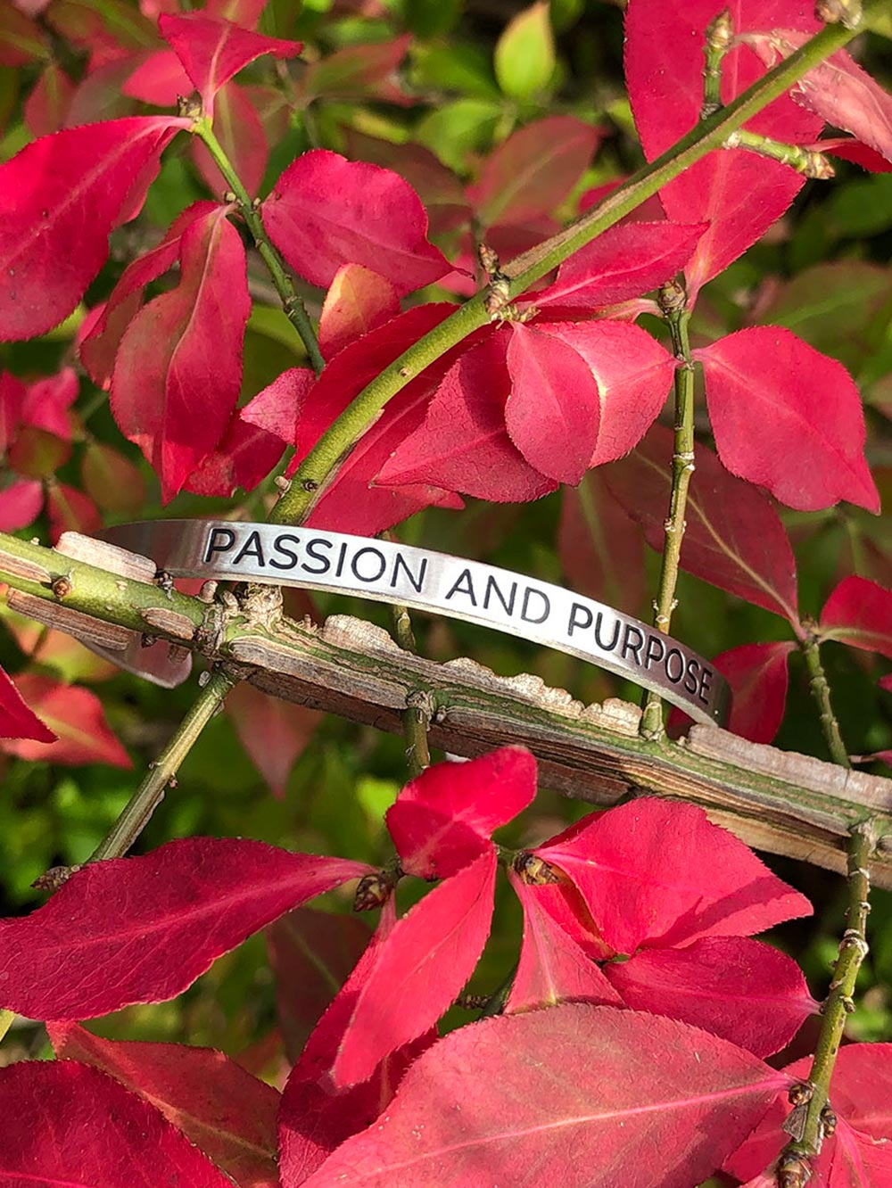 Passion and Purpose - Affirmation Bracelet