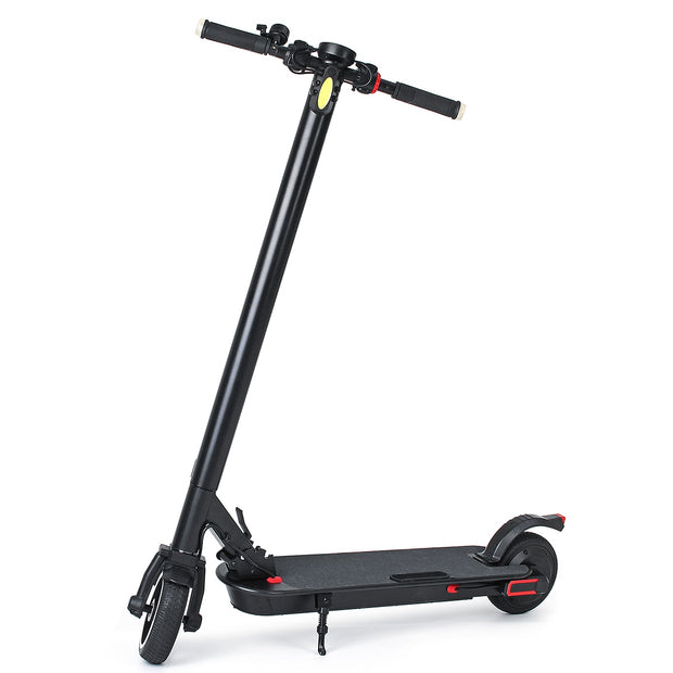 Adult Electric Scooter 100-240V 350W-Pro eRiders
