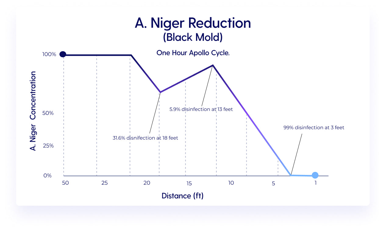 A. Niger Reduction (Black Mold)