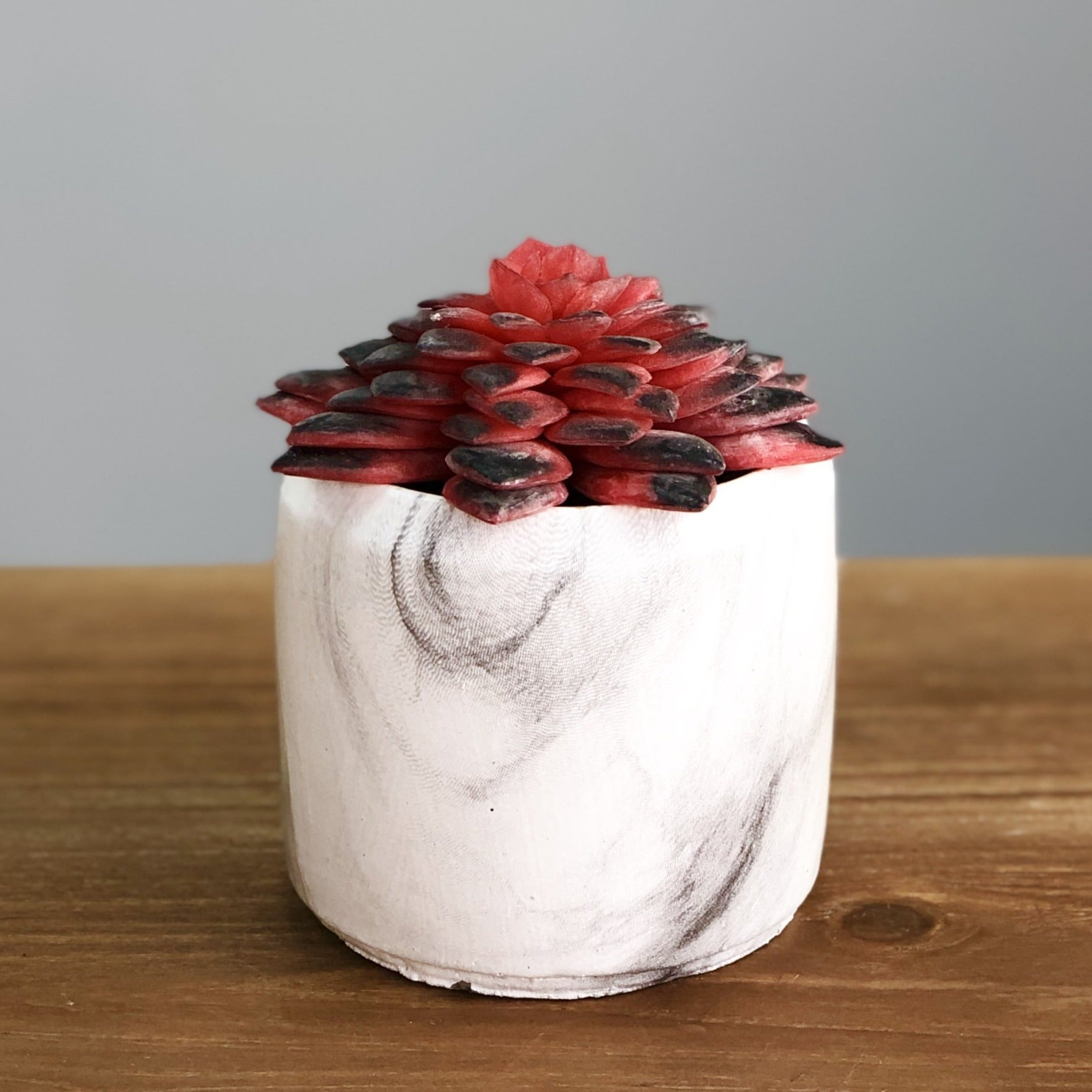 Synthetic Wine Succulent in a Marbling Pot