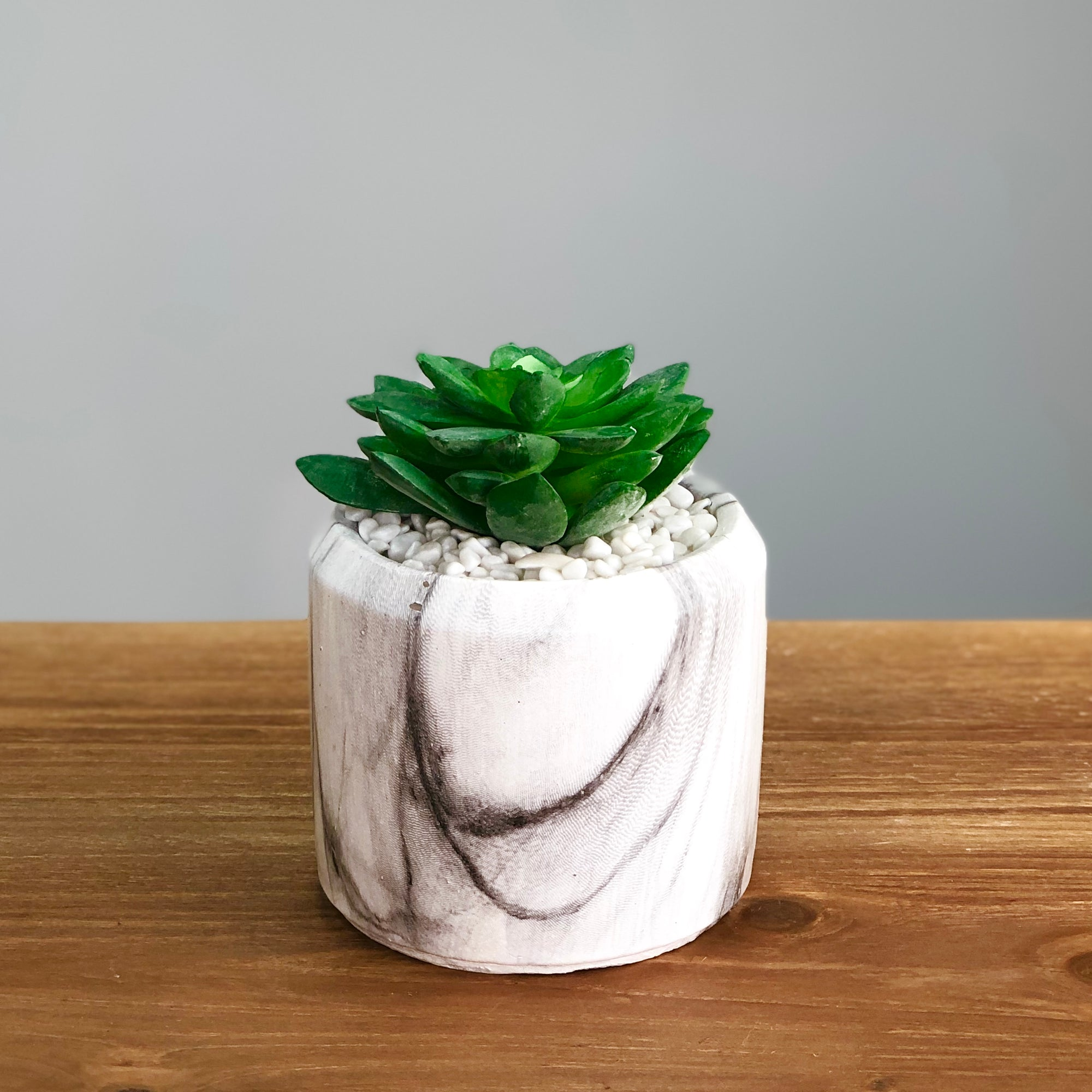 Synthetic Green Succulent in a Marbling Pot