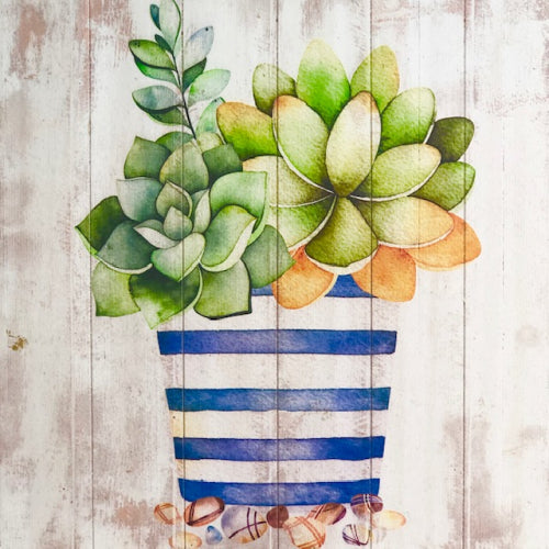 Wooden Blue Pot Succulent Painted