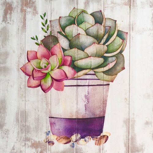 Wooden Purple Pot Succulent Painted