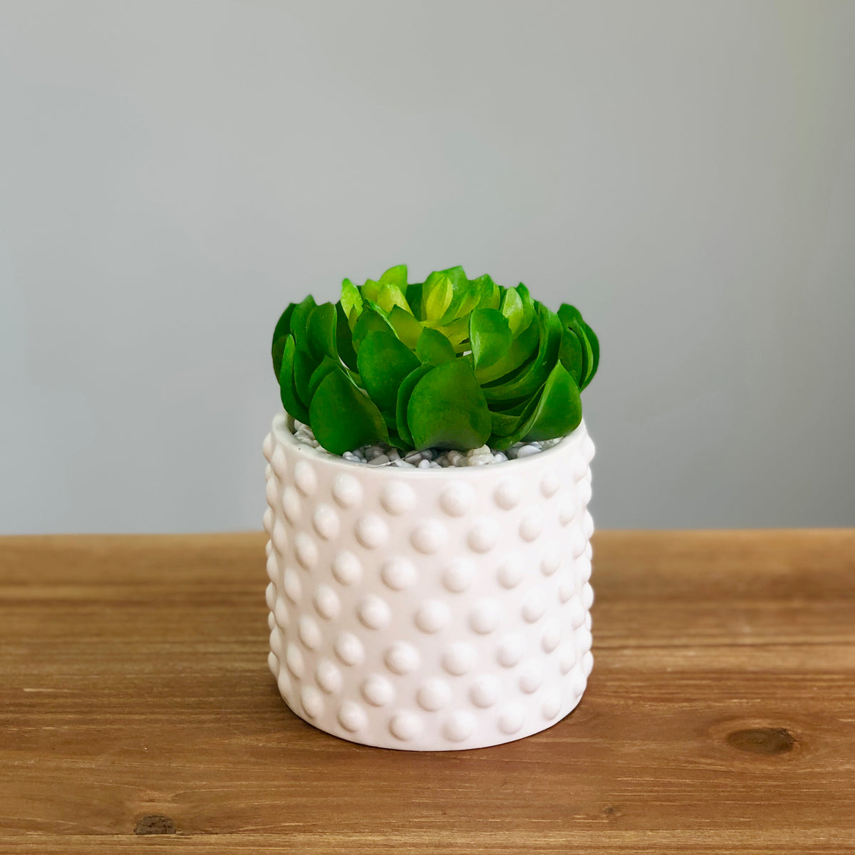 Green Succulent Dots Ceramic Pot