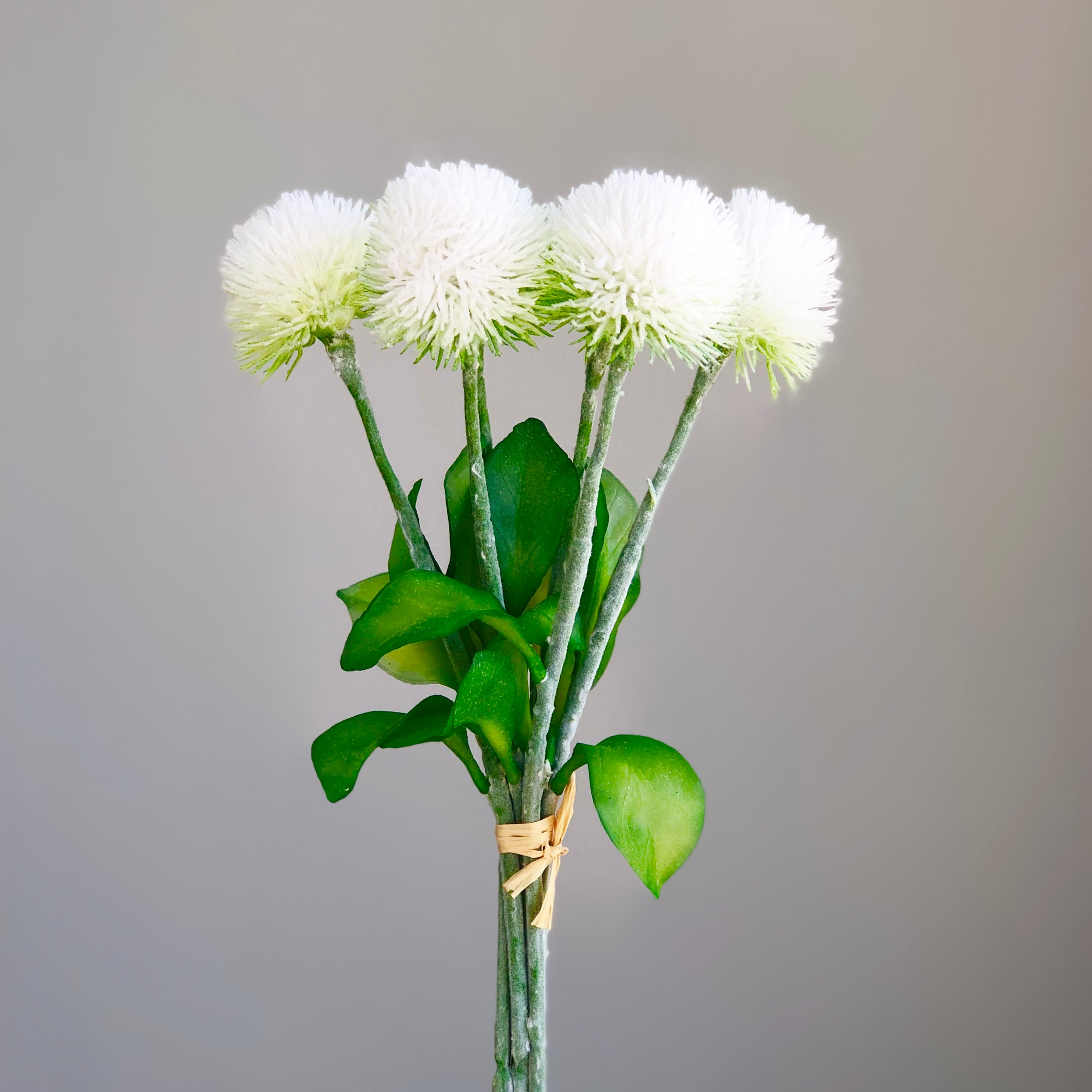 White Alium Six Set Flowers