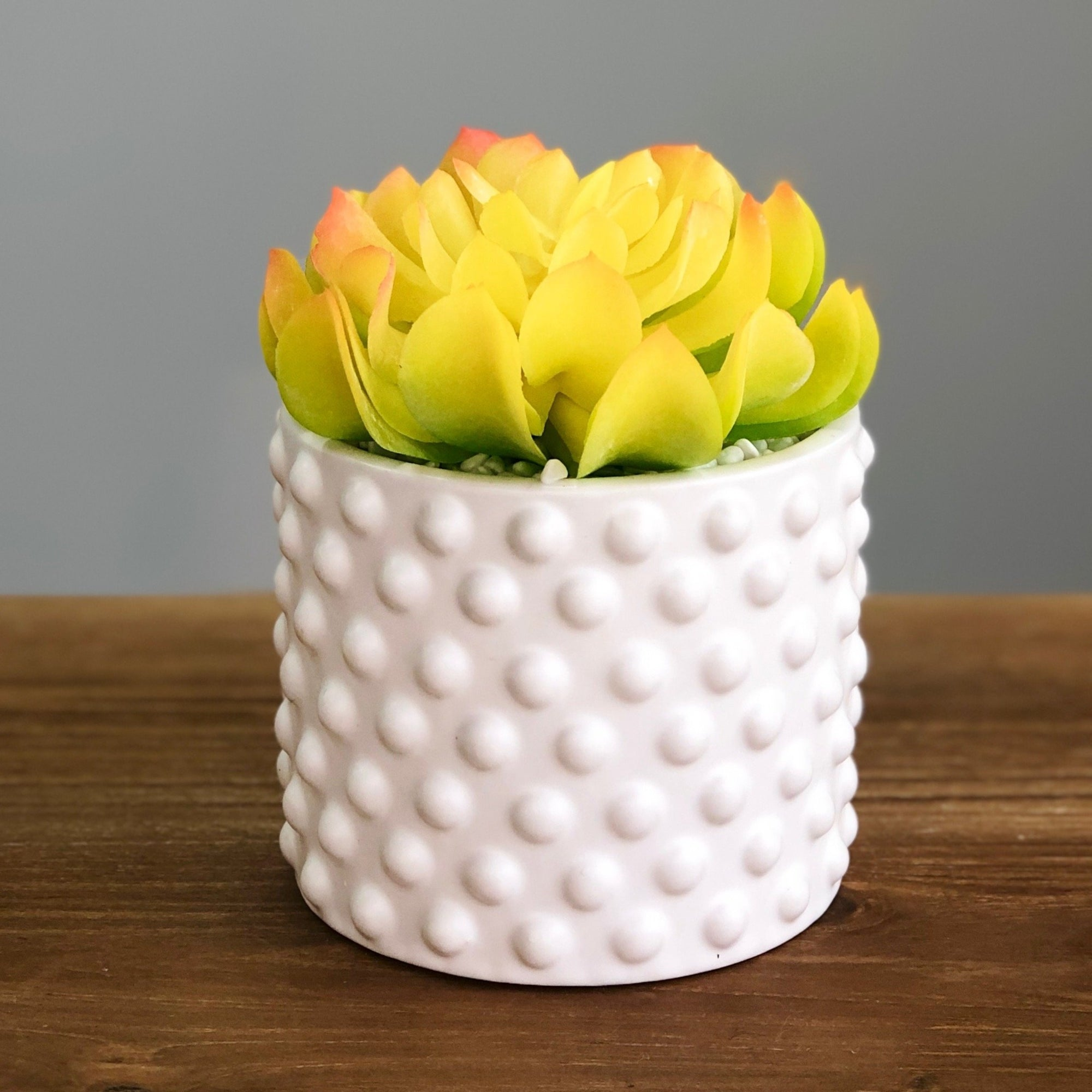Yellow Succulent Dots Ceramic Pot