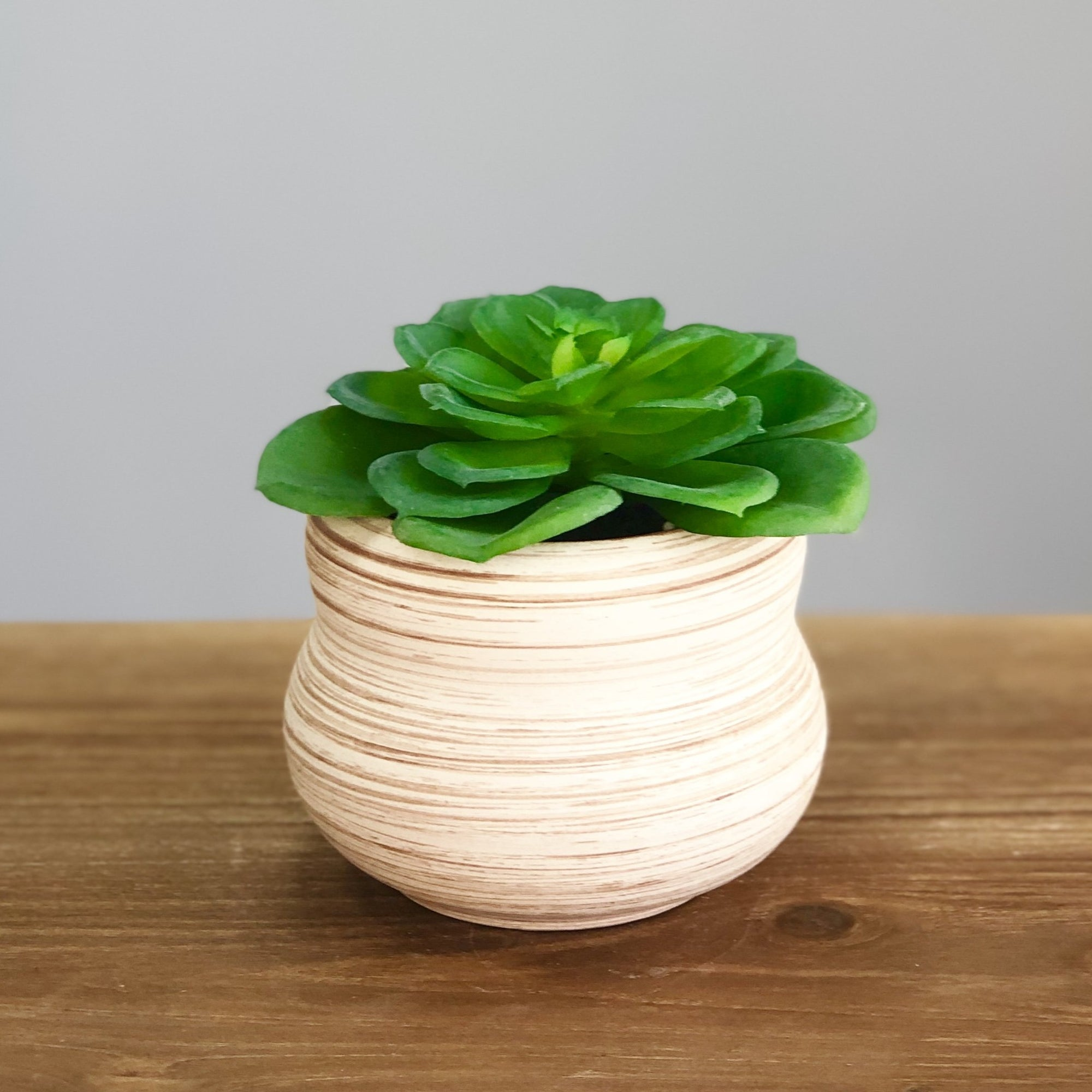 Synthetic Green Succulent in a Natural Pot