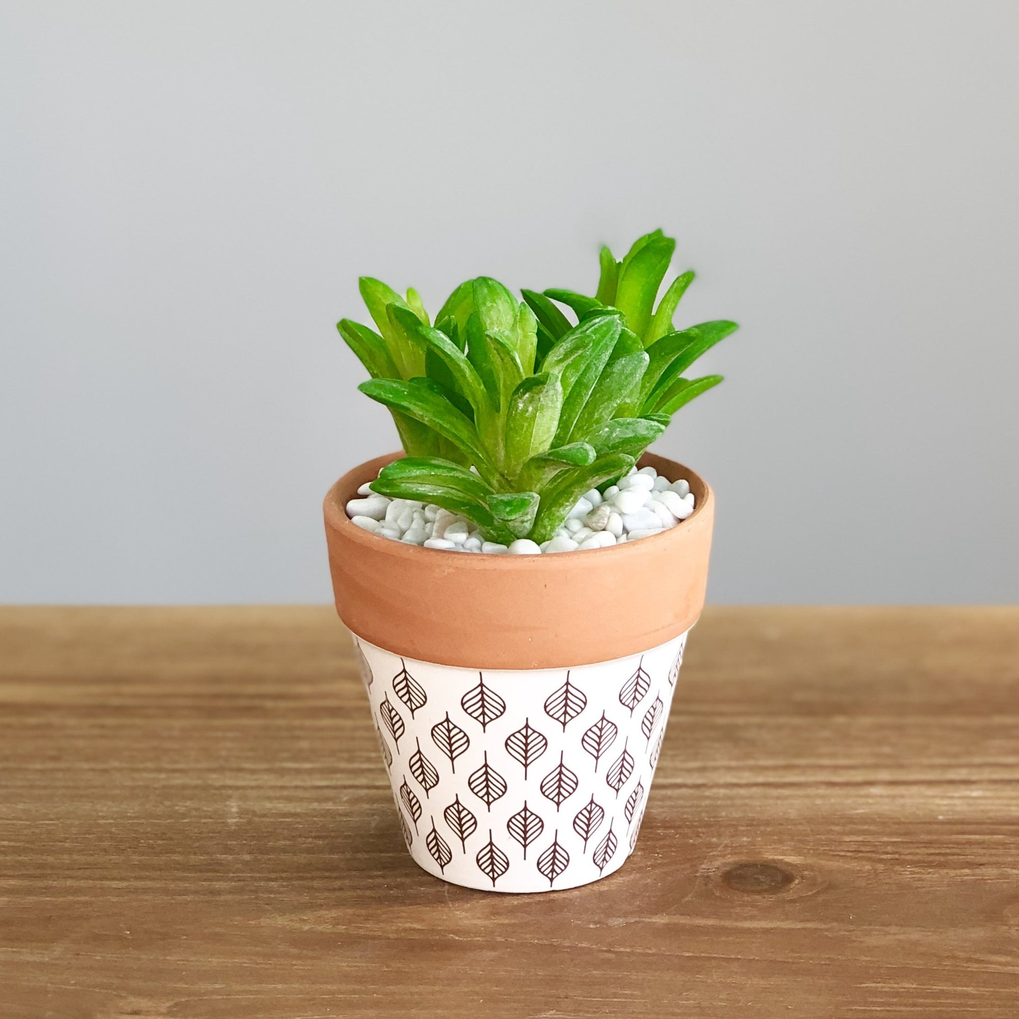 Synthetic Small Green Succulents in Pot