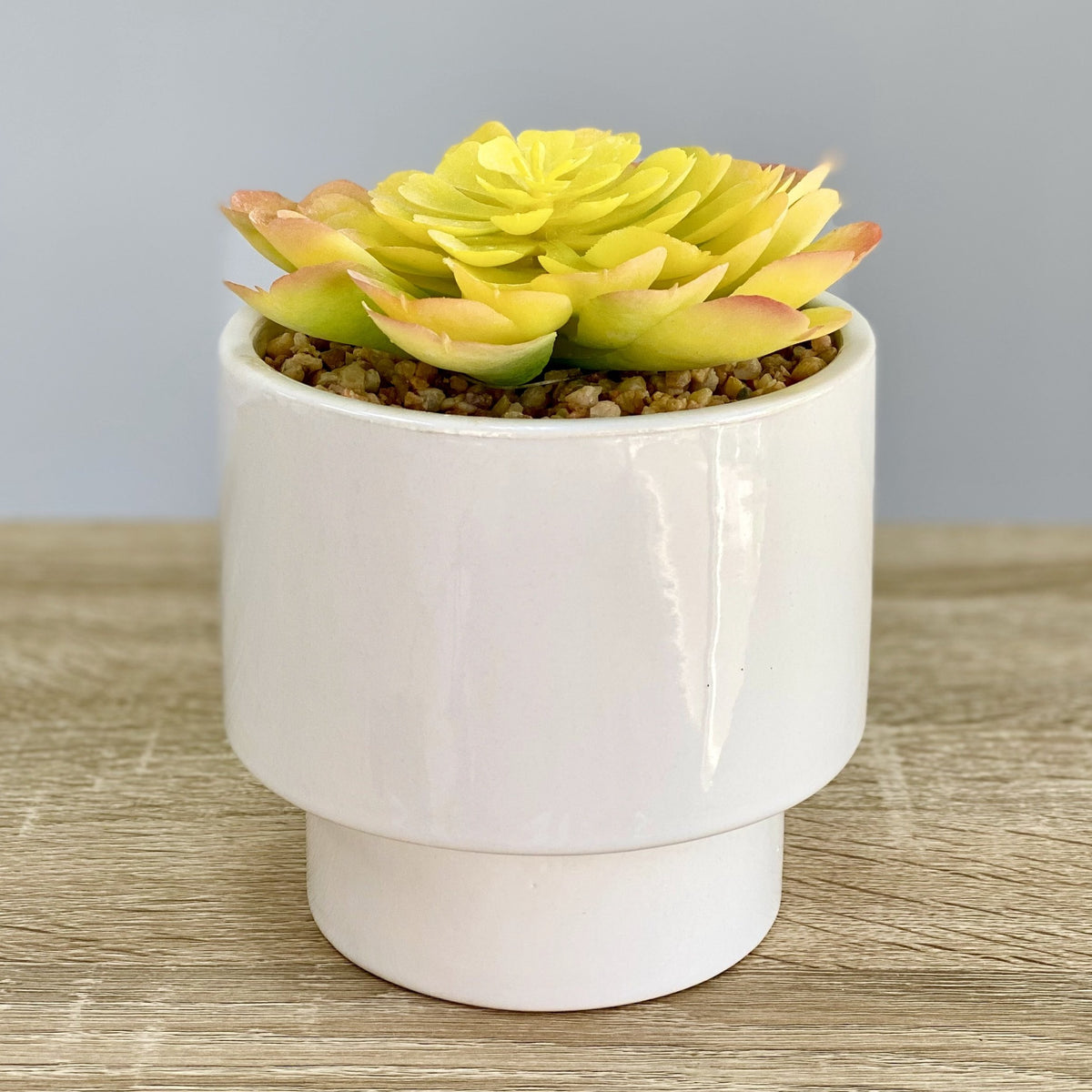 Yellow Succulent Simple Ceramic Pot