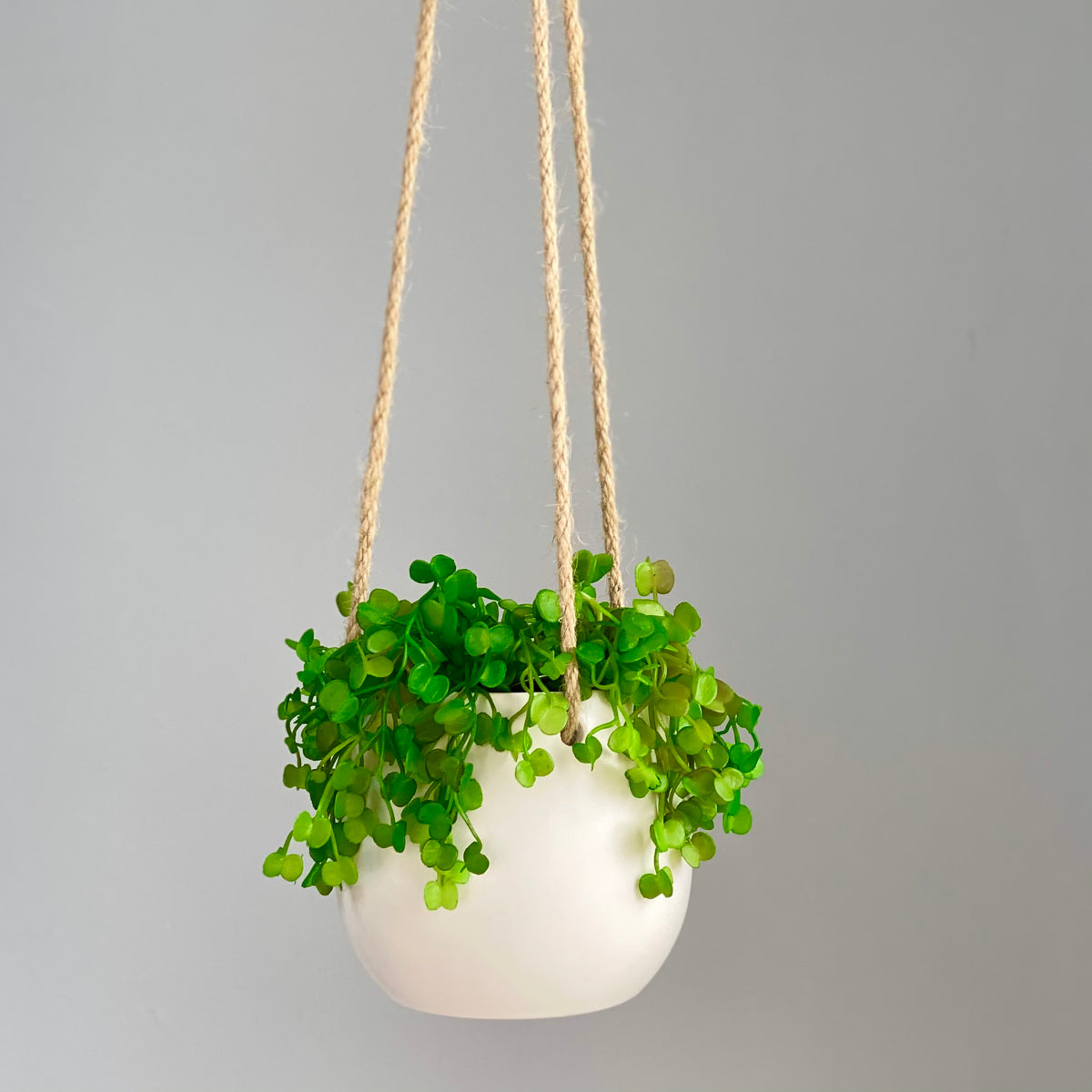 String of Nickels Minimal Hanging Planter