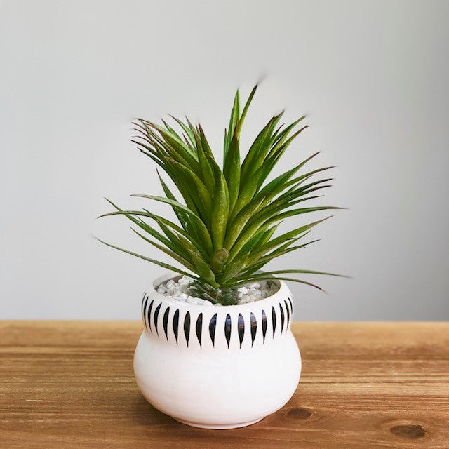 Synthetic Green Aloe Plant in a Pot