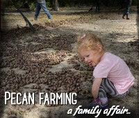 pecan farming is a family affair at Hudson Pecan Company