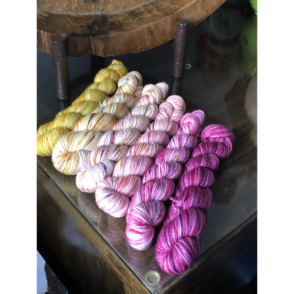SUNSHINE YARNS FLOWER CHILD GRADIENT SET - LUXURY SOCK