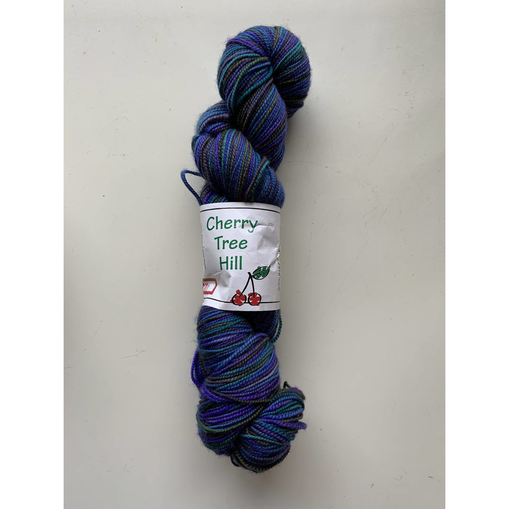 Cherry Tree Hill Yarn Supersock Select - River Run - Shoptinkknit