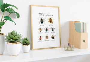 Bees of Australia Art Print